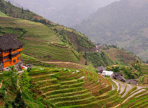 Longji Terraced Field at Longsheng County