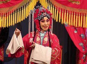 Beijing Opera Performance