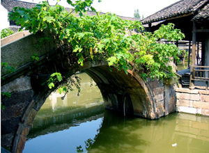Ancient Village - Wuzhen